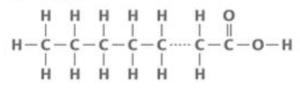 飽和脂肪酸