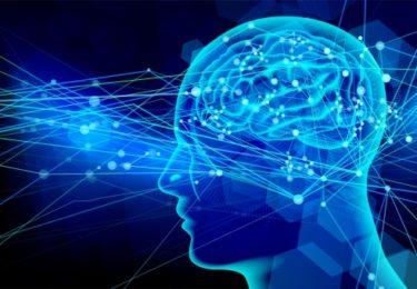 認知症と寿命の関係性
