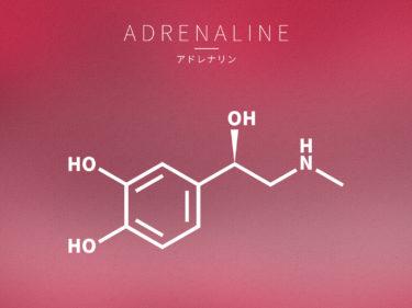 アドレナリンの作用について